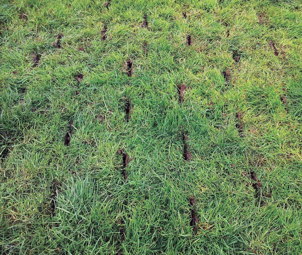 Agri-Vision Aeration, Aerating Field, Aerated PaddockSoil