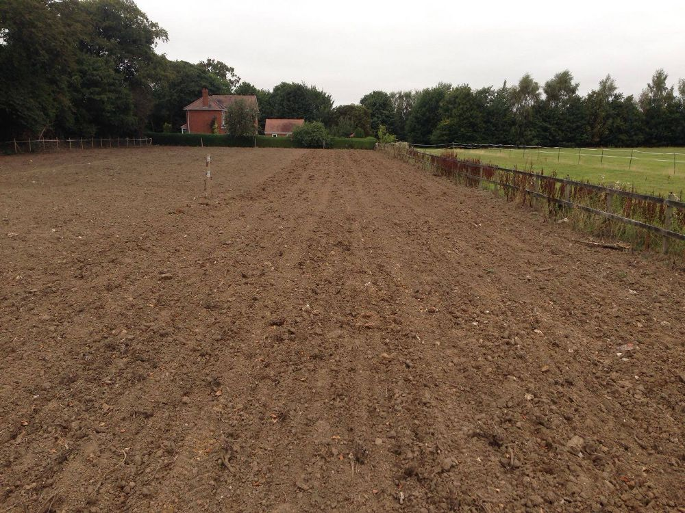 Seed Drilling Services